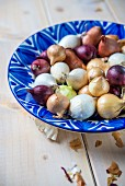 Various different coloured onions in blue ceramic bowl