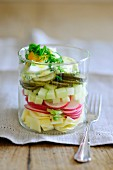 Cheese salad with radishes, apples, gherkins and egg