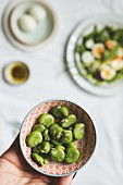 Broad beans as ingredients for a spring salad with salmon and eggs