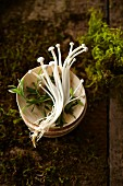 Enoki mushrooms in a stack of bowls on moss and earth