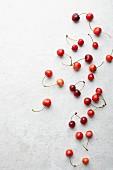 Frische Kirschen auf weißem Untergrund (Aufsicht)