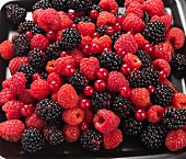 Raspberries, blackberries and redcurrants