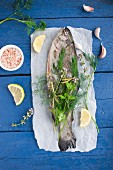 Raw trout garnished with fresh herbs and lemon slices on parchment paper