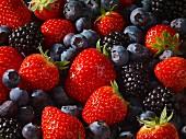Various berries (full frame)