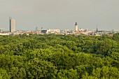 Leipziger Auwald mit Blick auf die Stadt, Leipzig, Deutschland