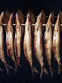 Smoked fish hanging on a rod