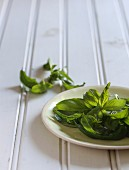 Fresh basil leaves