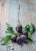 Damson with leaves on a sprig on a wooden surface