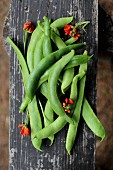 Beans on a wooden board in a garden