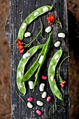 Opened bean pods on a wooden board in a garden