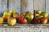 Trichter und Äpfel (Jonagold) in einem rustikalen Schrankfach