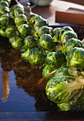 Roasted Brussels sprouts on a stalk