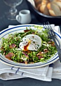 Frisee lettuce with bacon and a poached egg