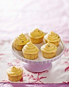 Cupcakes with passion fruit and chocolate cream
