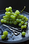 Green grapes with grape scissors on a black dish