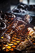 Meat and skewers on a barbecue