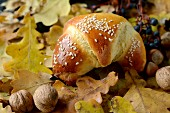 A sesame seed roll on autumnal leaves