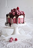 Raspberry ice cream cake with chocolate glaze
