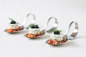 Probierlöffel mit Sojajoghurt-Terrine auf Tomatenwürfeln