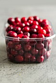 Cranberries in a plastic punnet