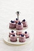 Punch cakes with candied violets on a cake stand