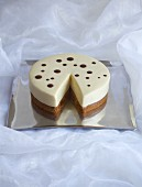 White cake with chocolate spots, sliced