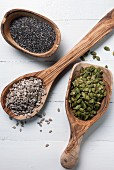 Chia seeds, sunflower seeds and pumpkin seeds on wooden spoons