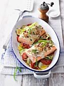 Überbackenes Lachsfilet mit Estragon auf Tomaten-Gurken-Gemüse