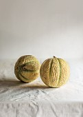 Two cantaloupe melons on a tablecloth