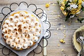 Lemon Meringue Pie auf Kuchengitter