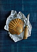 A scallop on a piece of newspaper with a knife