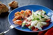 Tomaten-Fenchel-Salat mit Mozzarella und Lachs