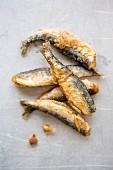 Fried smelts (close-up)
