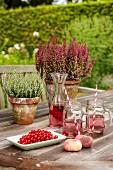 Erfrischungsgetränk und rote Johannisbeeren vor Tontöpfen mit Erica auf Gartentisch