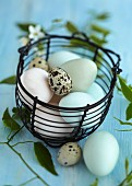 Eggs in a wire basket