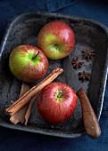 Apfelstilleben mit Gewürzen