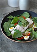 Salad Niçoise with quail's eggs, poached fish fillet and pistou sauce