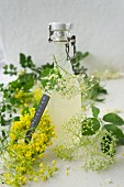 Elderflower syrup in a flip-top bottle, edlerflowers and a wreath of rape flowers
