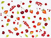 Various back-lit berries and cherries