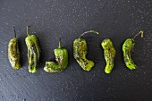 Six grilled shishito chilli peppers on a dark surface