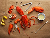 A cut-up lobster with lobster cutlery, a dip and labels
