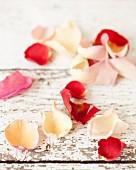Essbare Rosenblütenblätter