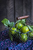 Green tangerines with leaves in a wire basket