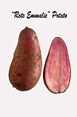 Red Emmalie potatoes on a white surface
