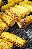 Sweetcorn cobs on the barbecue