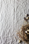 A nest with speckled quail eggs on a linen cloth (top view)