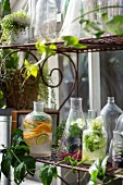 Various summer drinks with fruit, vegetables and herbs on a shelf in front of a house