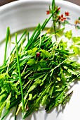 Various fresh herbs on a plate