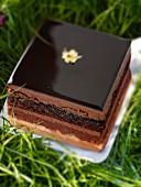 Opera cake (Frence chocolate cake)