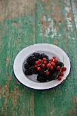 Blackberries and redcurrants